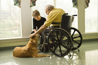 A-1 Home Care Pet Care